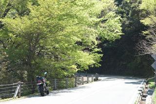 20170423道路反射.jpg